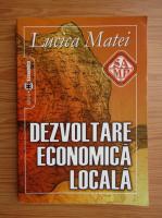 Anticariat: Lucica Matei - Dezvoltare economica locala