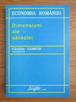Catalin Zamfir - Dimensiuni ale saraciei