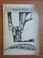 Anticariat: Eugenia Bulat - La Putna mi-e drumul
