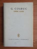 George Cosbuc - Opere alese (volumul 6)