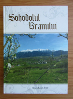 Ioan Puscariu - Sohodolul Branului