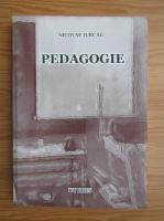 Nicolae Jurca - Pedagogie