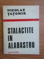 Nicolae Tatomir - Stalactite in alabastru
