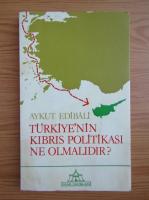 Anticariat: Aykut Edibali - Turkiye'nin kibris politikasi ne olmalidir?