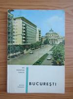 Dan Berindei - Bucuresti. Mic indreptar turistic