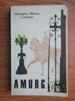 Anticariat: Georgeta Mircea Cancicov - Amurg