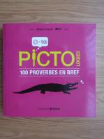 Matteo Civaschi - Pictologies. 100 proverbes en bref