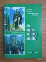 Anticariat: Stefan Negrea - Ad Aquas Herculi Sacras