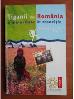 Anticariat: Emmanuelle Pons - Tiganii din Romania, o minoritate in tranzitie