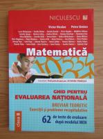Victor Nicolae - Matematica. Ghid pentru evaluarea nationala, clasa a VIII-a (2017)