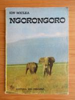 Anticariat: Ion Miclea - Ngorongoro