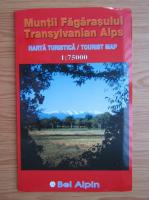 Anticariat: Muntii Fagarasului. Harta turistica (editie bilingva)
