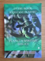 Anticariat: Ovidiu Bojor - Plante si miresme biblice