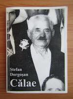 Anticariat: Stefan Dorgosan - Calae