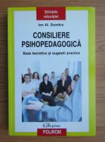 Anticariat: Ion Al. Dumitru - Consiliere psihopedagogica. Baze teoretice si sugestii practice