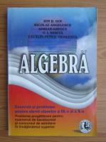 I. D. Ion - Algebra. Exercitii si probleme pentru elevii claselor a IX-a si a X-a