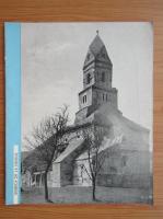 Anticariat: Biserica de la Densus
