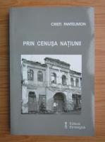 Anticariat: Cristi Pantelimon - Prin cenusa natiunii