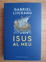 Anticariat: Gabriel Liiceanu - Isus al meu