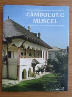 Anticariat: Schite pentru o monografie arhitecturala Campulung Muscel