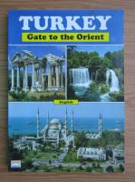 Anticariat: Turkey, gate to the Orient