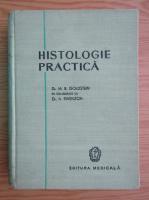 M. B. Goldstein - Histologie practica