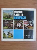 Gheorghe Focsa - Muzeul satului, Bucuresti