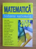 Anticariat: Gina Caba - Matematica pentru testarea nationala 2006