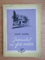 Anticariat: Valentin Silvestru - Jurnalul cu file violet