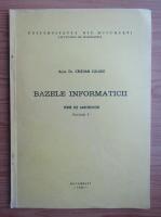 Cristian Calude - Bazele informaticii