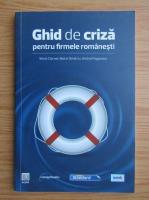 Anticariat: Dumitru Matei - Ghid de criza pentru firmele romanesti