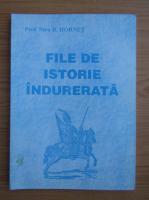 Anticariat: Nicu D. Hornet - File de istorie indurerata