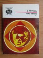 Anticariat: George Calinescu - Bietul Ioanide (volumul 2)