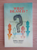 Mohammad Asif Kidwai - What Islam is?