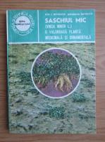 Anticariat: Ion Roventa - Saschiul mic, o valoroasa planta medicinala si ornamentala