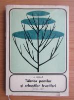 Anton Negrila - Taierea pomilor si arbustilor fructiferi