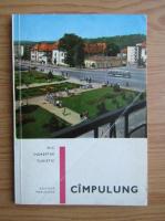 Darie Constantin - Campulung