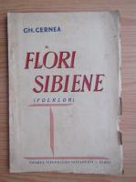 Anticariat: Gheorghe Cernea - Flori sibiene (1941)