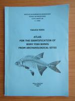 Valentin Radu - Atlas for the identification of bony fish bones from archaeological sites
