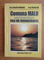 Anticariat: Ion Rugina - Comuna Malu