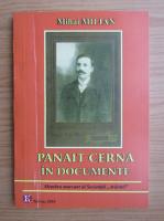 Anticariat: Mihai Milian - Panait Cerna in documente