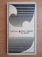Anticariat: Papp Ferenc - Omul coborat pe pamant