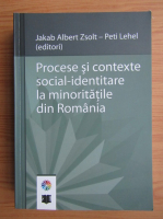 Procese si contexte social-identitare la minoritatile din Romania