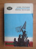 Anticariat: Jules Michelet - Istoria revolutiei (volumul 1)