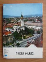 Anticariat: Onisie Hossu - Mic indreptar turistic. Tirgu Mures