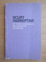 Bogdan Caus - Scurt indreptar al instructorului de brigada artistica
