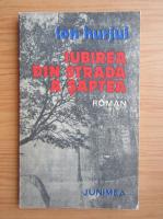 Anticariat: Ion Hurjui - Iubirea din strada a saptea