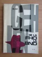 Anticariat: Mihai Ilie - De la F.H.O. la B.N.D. (volumul 2)