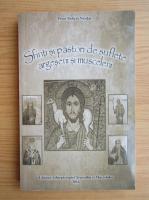 Anticariat: Robert Nicolae - Sfinti si pastori de suflete argeseni si musceleni