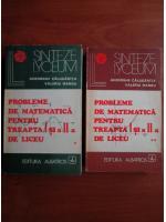 Anticariat: Gheorghe Calugarita - Probleme de matematica pentru treapta  I si a II-a de liceu (2 volume)